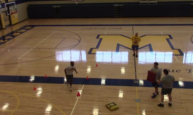 Buck Sweep Drill vs Playside Shade Defender- Middletown Area High School (PA)