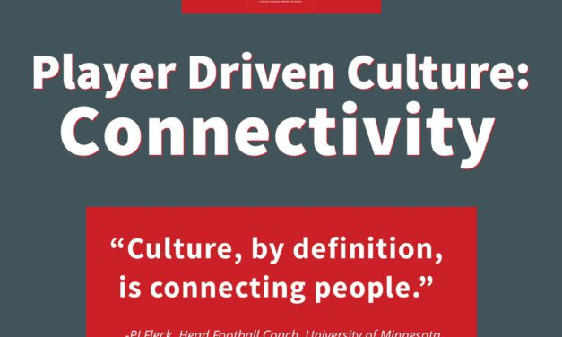 The Player Driven Culture System Case 2: Connectivity