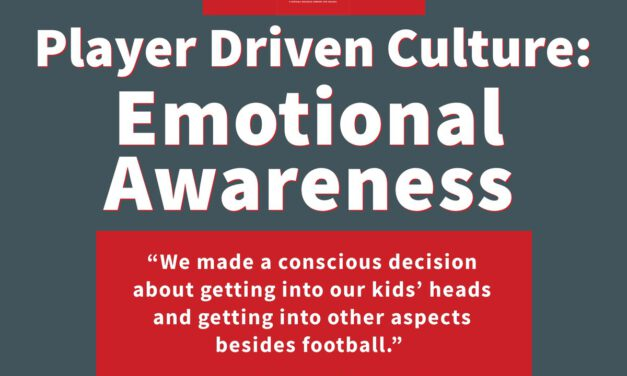 The Player Driven Culture System Case 4:  Emotional Awareness