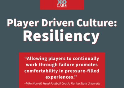 The Player Driven Culture System: Case 6: Resiliency